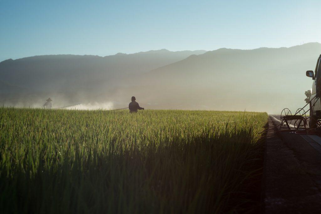 Impact of Counterfeit Pesticides